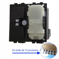 POUSSOIR 6A 250V 2 MODULES ARNOULD LIVING 20210 (Boite de 10)