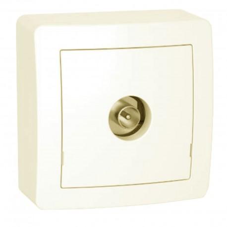 Prise TV simple mâle blindée 1 sortie avec cadre saillie blanc Alréa ALB62311